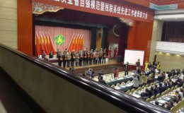 江苏省自强模范暨残联系统先进工作者表彰大会