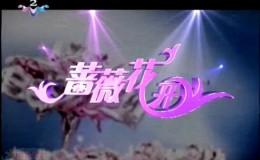 20号至22号到扬州录制《蔷薇花开》