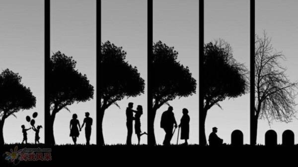 人生每个年龄段的取舍
